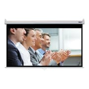 Hamilton Buhl™ WS-W4580 Manual Pull Down HDTV Projector Screen, 92""