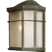 TransGlobe Lighting 1-Light Outdoor Flush Mount; Verde Green