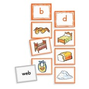 Primary Concepts Sound Sorting with Picture Cards: Final Consonant Sounds, 95/Set (1074)