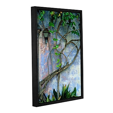 ArtWall Vine And Wall by Kathy Yates Framed Photographic Print on Wrapped Canvas; 12'' H x 18'' W