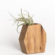 Boyce Studio Ren  Succulent Wood Pot Planter; Hickory