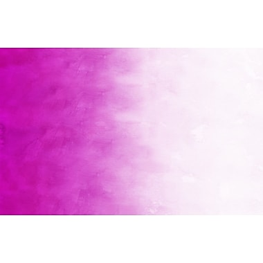 Manual Woodworkers & Weavers Ombre Pink Area Rug; 3'1'' x 1'10.5''