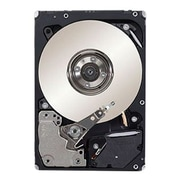"Dell™ 400-AJOQ 300GB SAS 2 1/2"" Internal Hard Drive"
