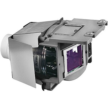 BenQ® Replacement Lamp for SU917 Projector, 340 W (5J.JCT05.001)