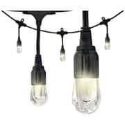 Enbrighten 31664 Cafe LED Lights (48ft; 24 Acrylic Bulbs)