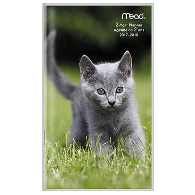 Mead® 2017-2018 Two-Year Pocket Monthly Planner, Kitten Design, Bilingual