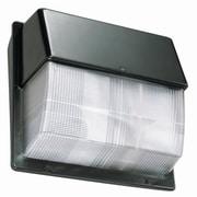 Lithonia Lighting 30-Light Outdoor Flush Mount