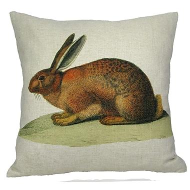 Golden Hill Studio Brown Bunny Pillow Cover