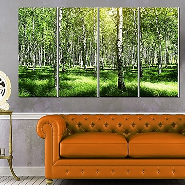 Beautiful Birch Grove Landscape Metal Wall Art