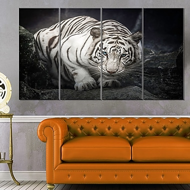White Tiger Animal Photography Metal Wall Art