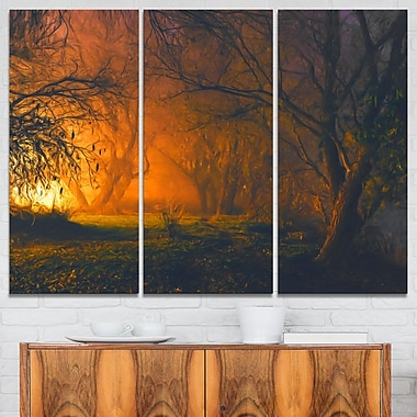 Magical Light in Forest Landscape Metal Wall Art