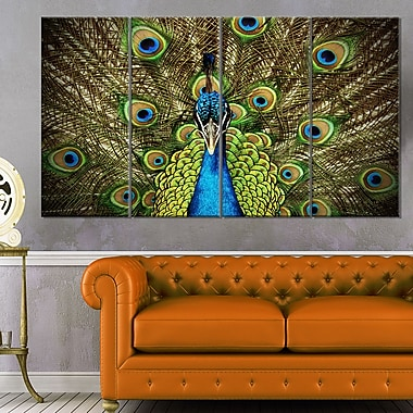 Grand Peacock Animal Photography Metal Wall Art, 48x28, 4 Panels, (MT6535-271)