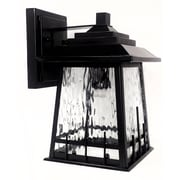 QSPL Rainier 1-Light Wall Sconce