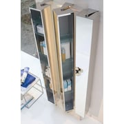 WS Bath Collections Linea 9.8''W x 72''H Wall Mounted Cabinet