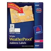Avery White WeatherProof Address Labels, 1 inch X 2 5/8 inch , 1,500/Box (5520) by