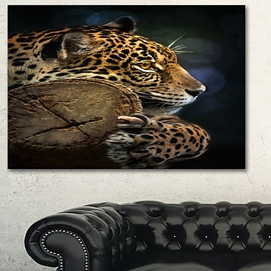 Relaxing Jaguar Animal Photography Metal Wall Art, 28x12, (MT6410-28-12)