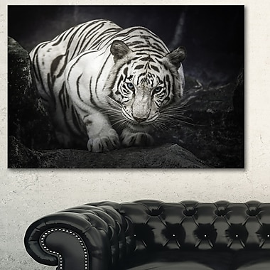 White Tiger Animal Photography Metal Wall Art, 28x12, (MT6426-28-12)