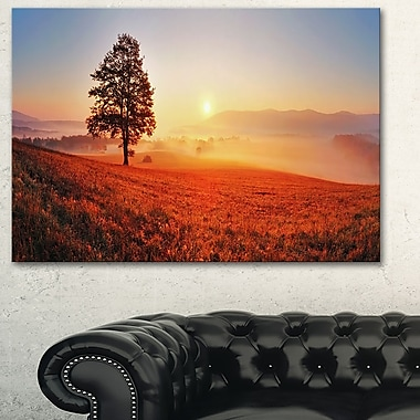 Tree and Sun Landscape Photography Metal Wall Art, 28x12, (MT6472-28-12)