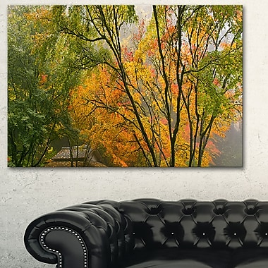 Canopy of Maple Trees in Fall Floral Metal Wall Art, 28x12, (MT6487-28-12)