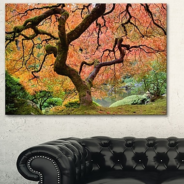 Autumn Maple Tree Landscape Photography Metal Wall Art, 28x12, (MT6493-28-12)
