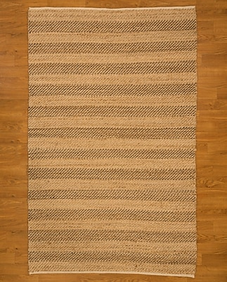 Natural Area Rugs Hand Woven Beige Area Rug; Rectangle 8' x 10'