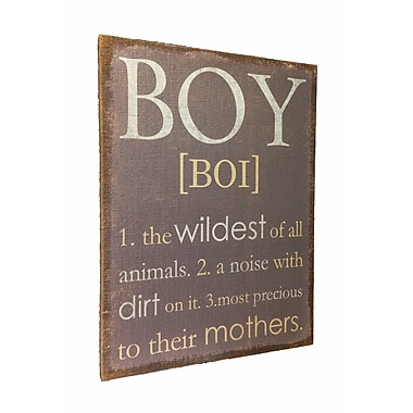 Wilco Home Inspire Me The Definition of the Word ''Boy'' Framed Textual Art