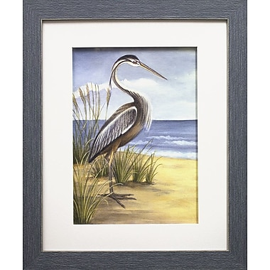 Star Creations Shore Bird I by Ethan Harper Framed Painting Print