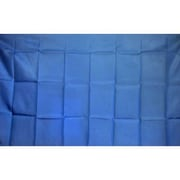 NeoPlex Light Solid Traditional Flag