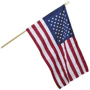 NeoPlex USA Sleeve Banner Traditional Flag
