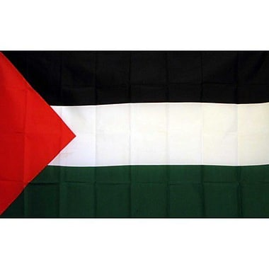 NeoPlex Palestine Country Traditional Flag