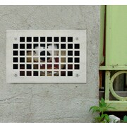 BLIK Inc 4 Piece Taz Wall Decal Set