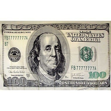NeoPlex 100 Dollar Bill Novelty Traditional Flag