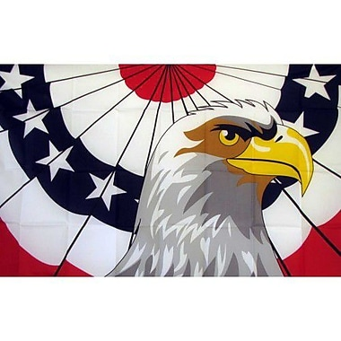 NeoPlex Patriot Eagle Traditional Flag