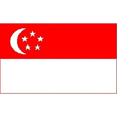 NeoPlex Singapore Country Traditional Flag