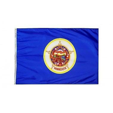 NeoPlex Minnesota Glo Traditional Flag