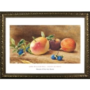 Buy Art For Less Museum Masters 'Study of Fruit, 1877' by John William Hill Framed Painting Print