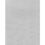 LUX 8 1/2 x 11 Paper 50/Box, Silver Sparkle (81211-P-MS01-50)