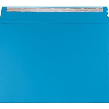 LUX Mailers (9 1/2 x 12 1/2) 500/Box, Pool (LUXMLR-102-500)