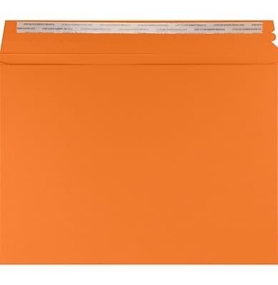 LUX Mailers (9 1/2 x 12 1/2) 250/Box, Mandarin (LUXMLR-11-250)