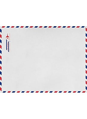 LUX 6 x 9 Open End Envelopes (6 x 9) - Airmail - Pack of 1000 (2444797)