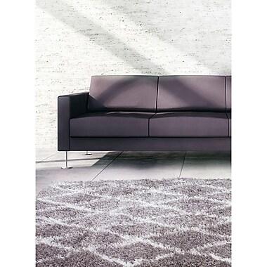 Ecarpetgallery – Tapis à poils longs Labrador Diamante 5 pi 3 po x 7 pi 3 po, gris foncé/blanc