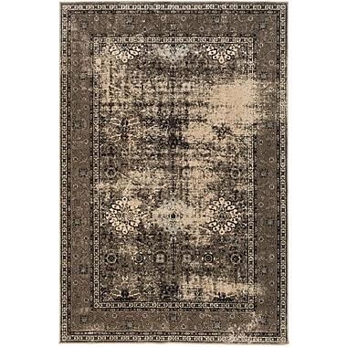 Ecarpetgallery – Tapis Frost, 7 pi 10 po x 10 pi 2 po, kaki