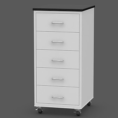 SteelSentry 5 Drawer Rolling Modular Cabinet