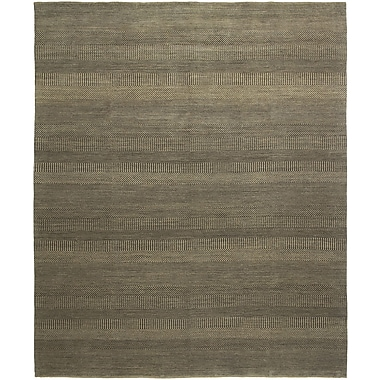 Shalom Brothers Illusions Hand-Knotted Gray/Beige Area Rug; 9' x 12'