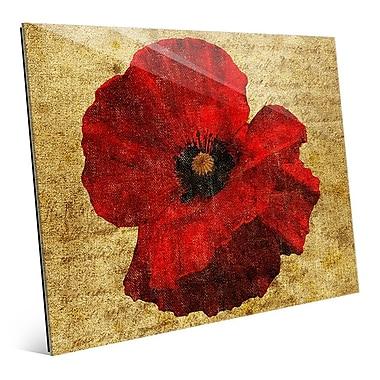 Click Wall Art 'Poppy Flower' Graphic Art; 16'' H x 20'' W x 1'' D