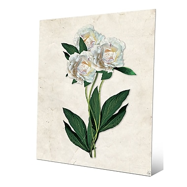 Click Wall Art 'White Carnations Paper' Graphic Art; 30'' H x 20'' W x 0.04'' D