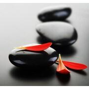 Cortesi Home Into the Zen Photographic Print
