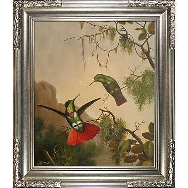 Tori Home Two Hooded Visorbearer Hummingbirds by Martin Johnson Heade Framed Painting Print