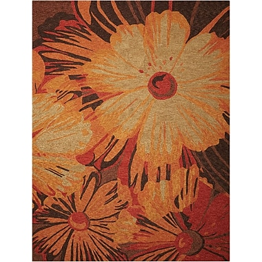 Nourison South Beach Hand-Woven Orange/Brown Indoor/Outdoor Area Rug; 8' x 10'6''