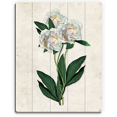 Click Wall Art 'White Carnations Paper' Graphic Art on Plaque; 14'' H x 11'' W x 1'' D